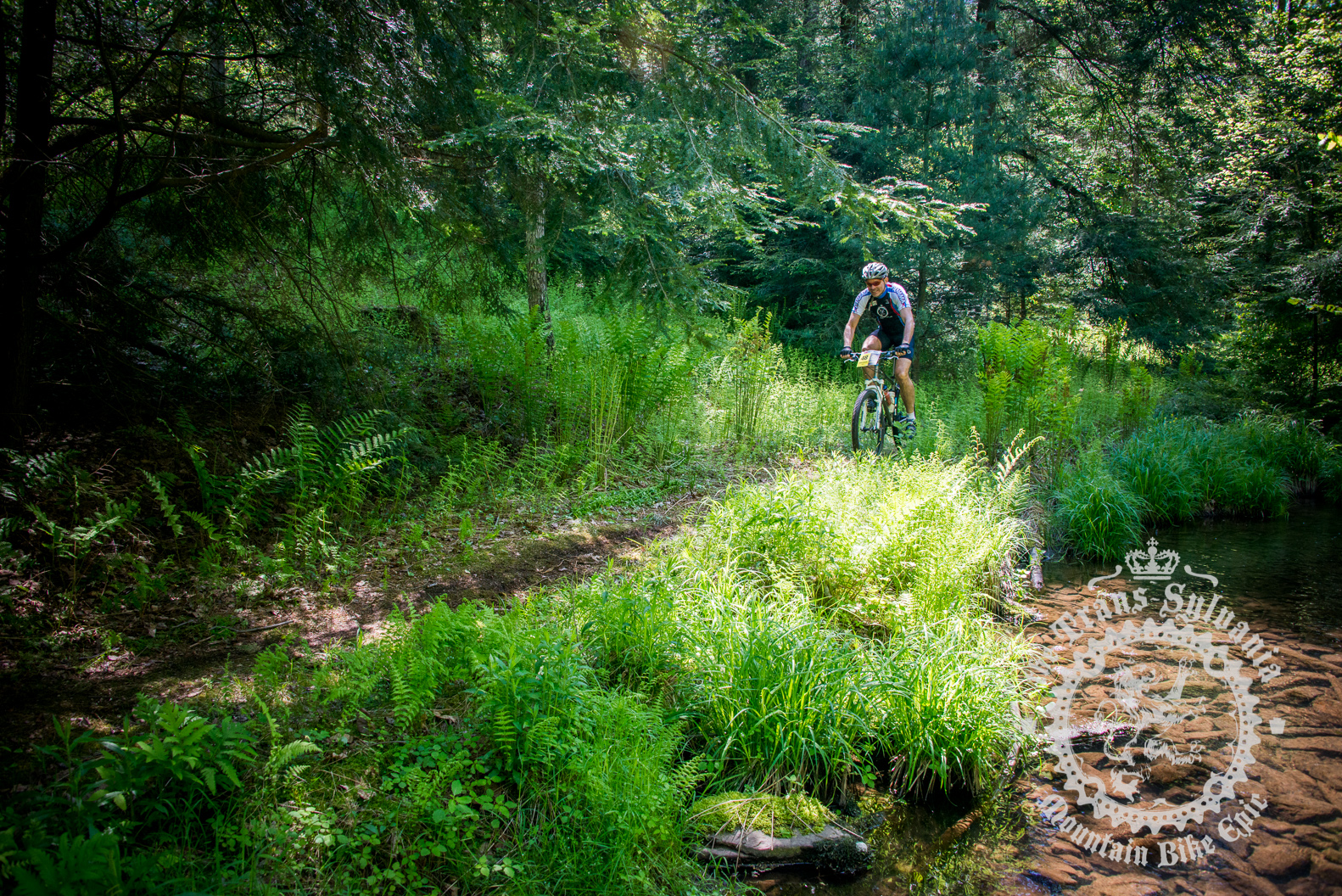 Rider through the stream valley of the Prologue