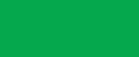 IMBA Epics Logo