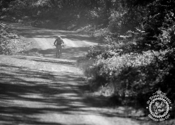 Justin Lindine descends a dusty gravel road before turning into singletrack