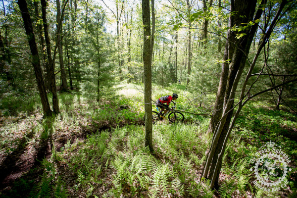 The riders head through he landscapes of the ferns and trees of Stage 7