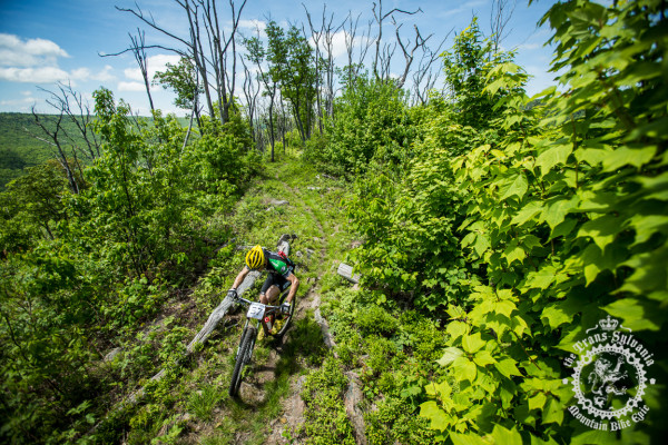 Michael Broderick pedals through the grown in to p of the Tussey Ridge Trail