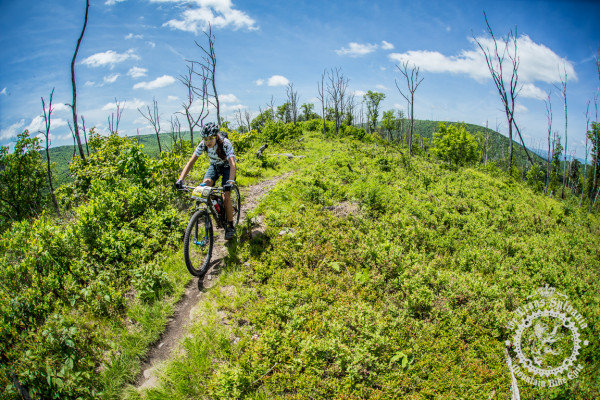 Emily Shields in a wide open part of the Tussey Ridgeline Trails