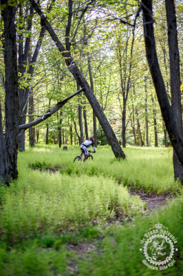 Peter Glassford (Trek – Canada) blazes through the Pennsylvania ferns.