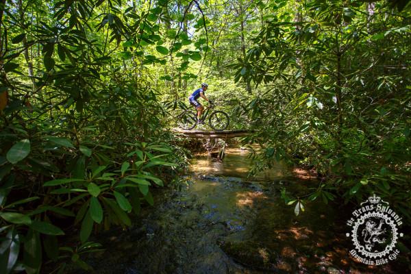 A rider makes his way across a wooden bridge in the NoTubes Trans-Sylvania Epic.
