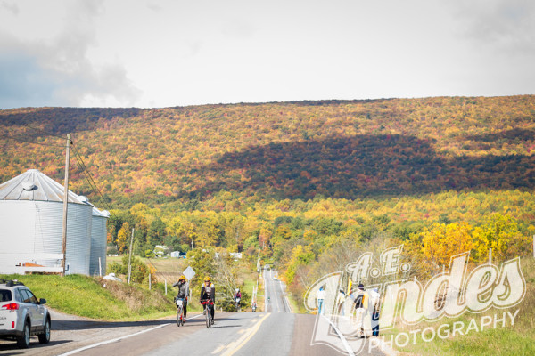 Literally could not have picked a better time to be in Williamsport for the fall foliage.