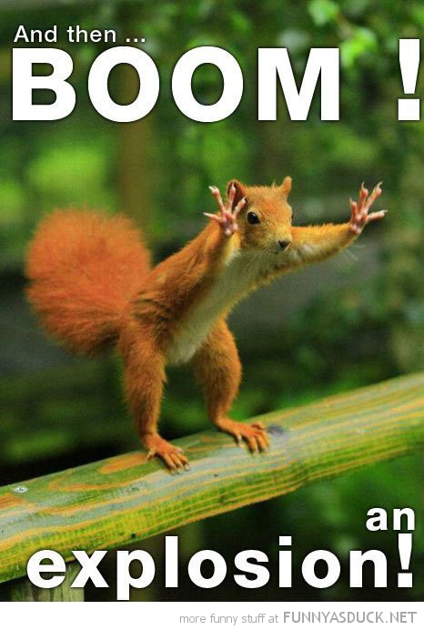 funny-squirrel-hands-up-boom-explosion-pics